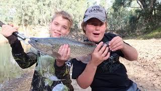 Dope Murray cod fishing