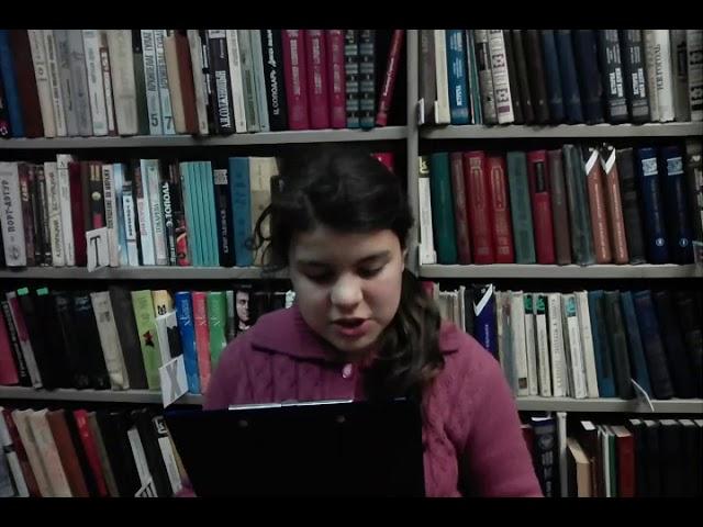 Изображение предпросмотра прочтения – ЛюдмилаГорушкина читает произведение «Гроза» Ф.И.Тютчева