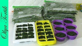 Заморозка зелени на зиму Как заморозить зелень Два способа заморозки