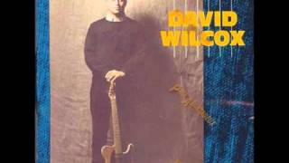 David Wilcox:  Bad Apple