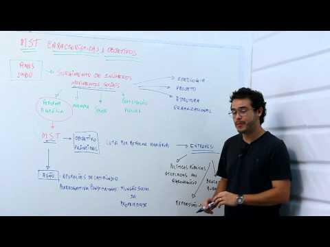 MST  características e objetivos