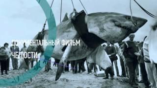 «Челюсти», документальный фильм