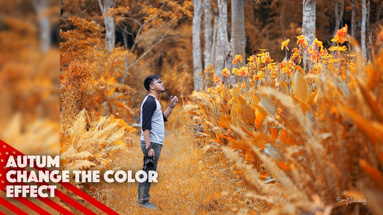 How To Change The Color Autumn Effect   Photoshop Tutorial
