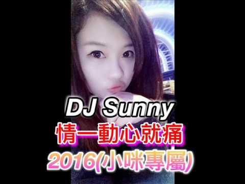 DJ Sunny - 情一動心就痛 2016(小咪專屬)