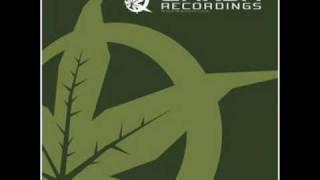 DJ Hazard/Dirty Harry - W9