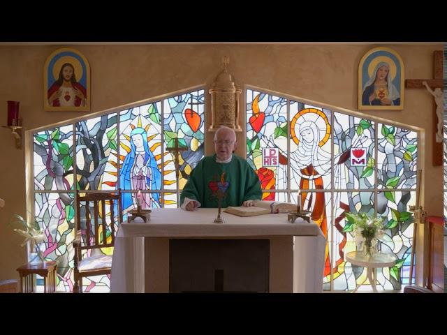 8-20-20 Healing Mass by Fr. Michael Barry