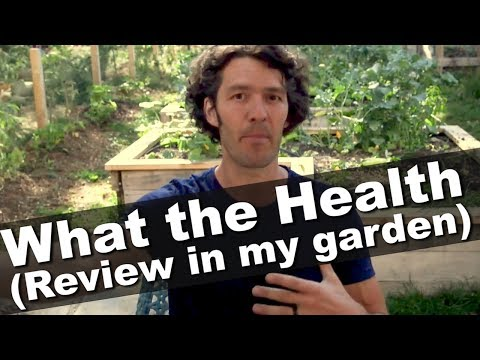 What the Health Review- The Good, Bad & Ugly