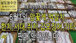 6월1일(판매생선)먹갈치,암꽃게,갑오징어,한치,민어,서…