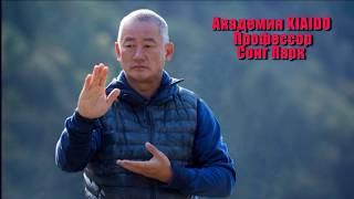 Киай Тайчи: В чем его отличие от традиционных стилей?