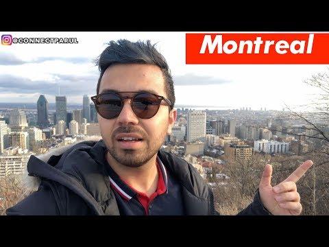 Punjabi students visit to Mont Royal, Montreal vlog