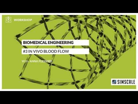 Biomedical Engineering Workshop: Session 3 - In Vivo Blood Flow