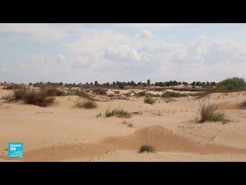 ليبيا تواجه خطر زحف التصحر وسط انشغال السلطات بالحروب والأزمات الاقتصادية  - نشر قبل 20 ساعة