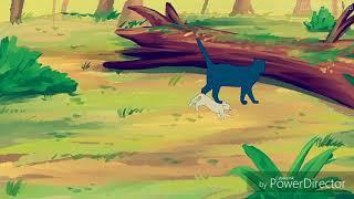 Коты воители Буран