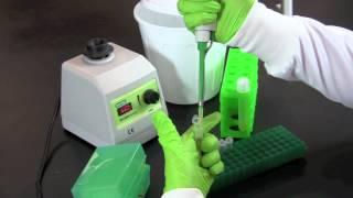 How Microbes Grow | Microbiology