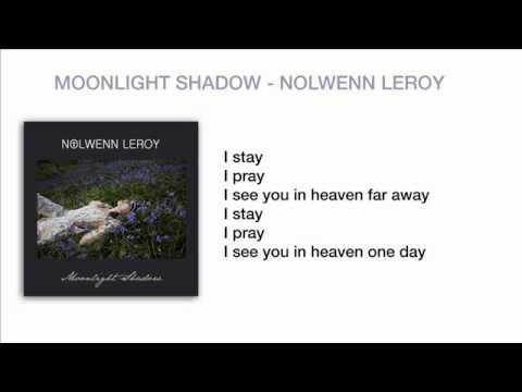 Nolwenn Leroy - Moonlight Shadow
