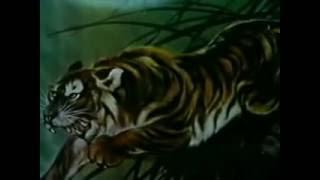 Кунг фу стиль тигра
