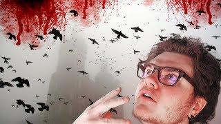 Et Si Tous Les Oiseaux Disparaissaient ? (en 360s)
