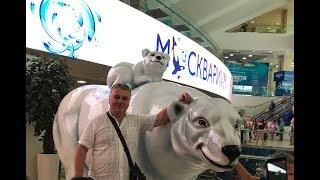 Смотреть видео Интересное водное шоу на ВДНХ в Москве онлайн