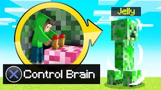 ENTERING And CONTROLLING MOBS In MINECRAFT! (Funny)