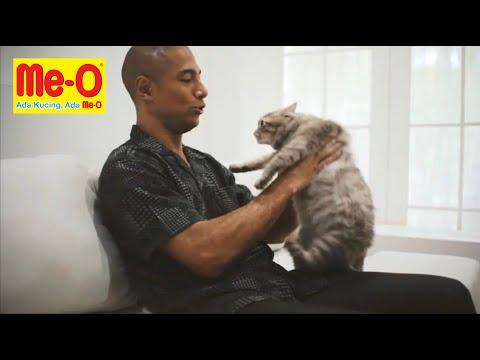 Marcell Siahaan : ' Kucing kamu pasti menyukai MeO Cat Food !'