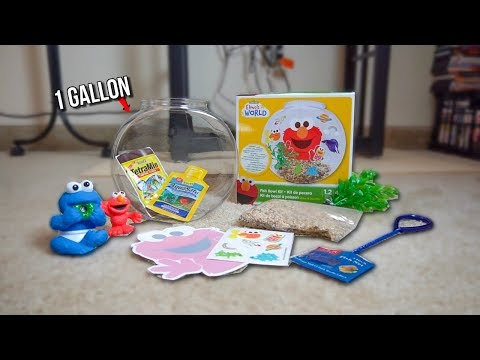 1 Gallon ELMO THEMED Fish AQUARIUM STARTER KIT!!