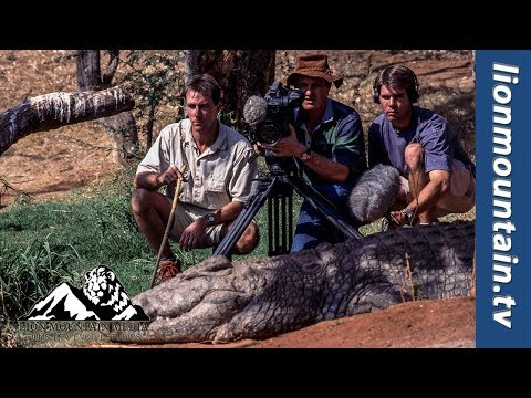 Behind The Lens | When a crocodile is camera shy