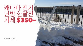 캐나다 이민.전기세 얼마나 나와요? 전기 난방집 350…