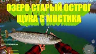 Русская рыбалка 4 рр4 rf4 щука с мостика на озере Старый Острог