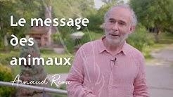 Le message des animaux - Arnaud Riou