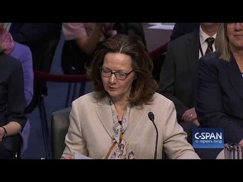 Gina Haspel to Head the CIA: Ray McGovern. GRTV Interview