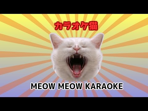 Meow Meow Karaoke - weird crazy Japanese song