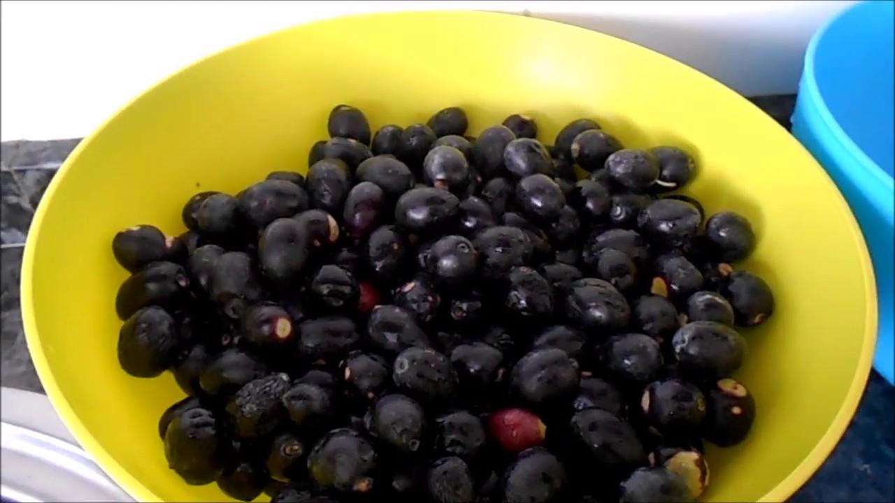 Receta para hacer olivas negras caseras