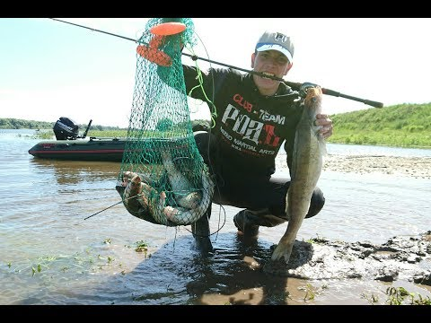 рыбалка в рязанской области на донку
