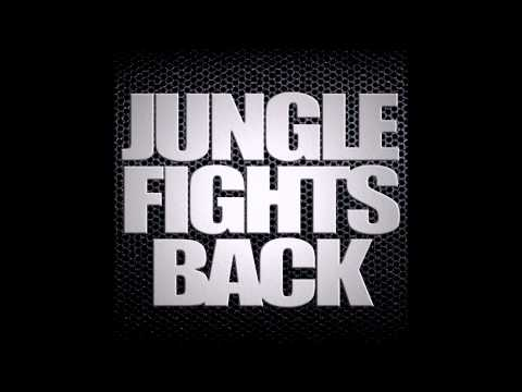 Jungle Fights Back - 130bpm Jungle Mix