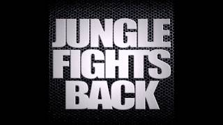Jungle Fights Back - 130bpm Jungle Mix