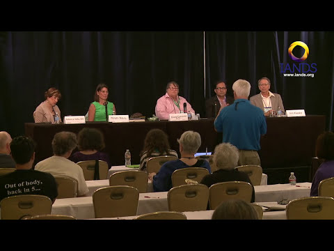 Physicians discuss the impact of NDEs on medical practice