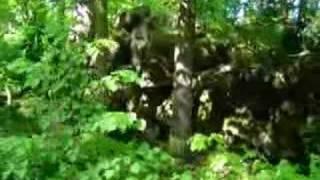 Pozezdrze - Himmler's secret HQ
