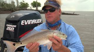 Deadly Combo Fishing for Redfish With Popping Corks in the Everglades