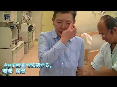 1333: 歯肉の腫れは膵臓の状態を知らせるサイン