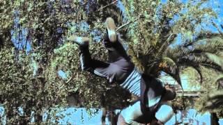 Repeat youtube video Best BJJ / Brazilian Jiu Jitsu Scene in a Movie