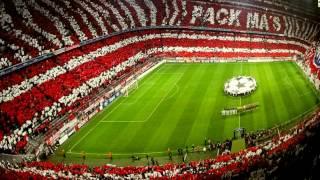 Кошка мочит, болеет за FC Bayern München