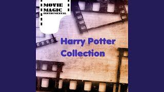 Harry Potter and the Prisoner of Azkaban - Hagrid the Professor (Piano Solo)