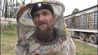 Борьба с пчелиным клещом варроа без химии с помощью термокамеры