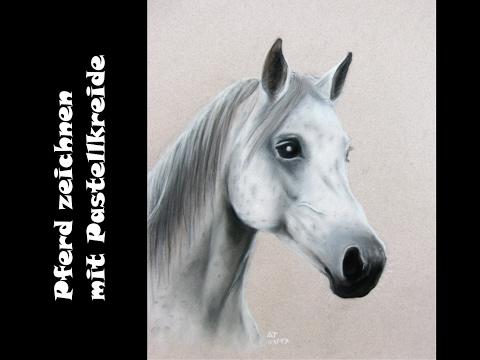 Pferd zeichnen / Pastellmalerei: Pferdeporträt [Teil 3] Finish