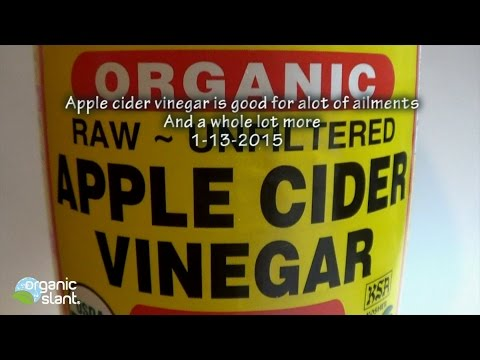 apple-cider-vinegar-is-good-for-alot-of-ailments...and-a-whole-lot-more-1-13-2015-|-organic-slant