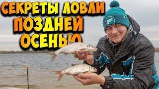 Крупная ПЛОТВА прёт на фидер Секреты ловли рыбы поздней осенью ТАКТИЧЕСКИЙ ФИДЕР
