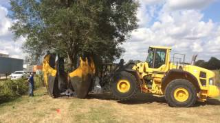 106 Inch Loader-mounted Curved Tree Spade Working