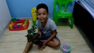 Baixar Vídeo Eduardo Souza de Oliveira - 4 anos