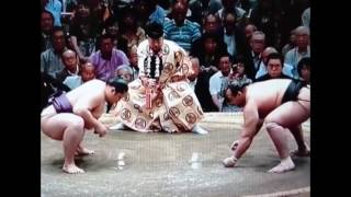 Sumo Knockouts Ever Mongolia  Сумо 2