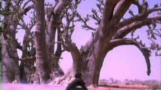 Senegal - Ismael Lo - Tajabone.flv